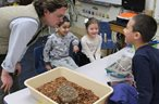 Fulmar Students Learn What Animals Do in Winter